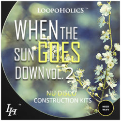 When The Sun Goes Down Vol. 2: Nu Disco Construction Kits